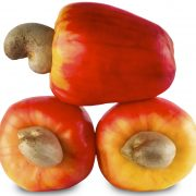 cashew nutshell liquid