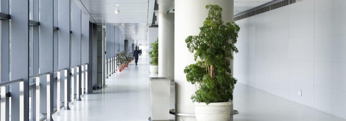 white floor coatings