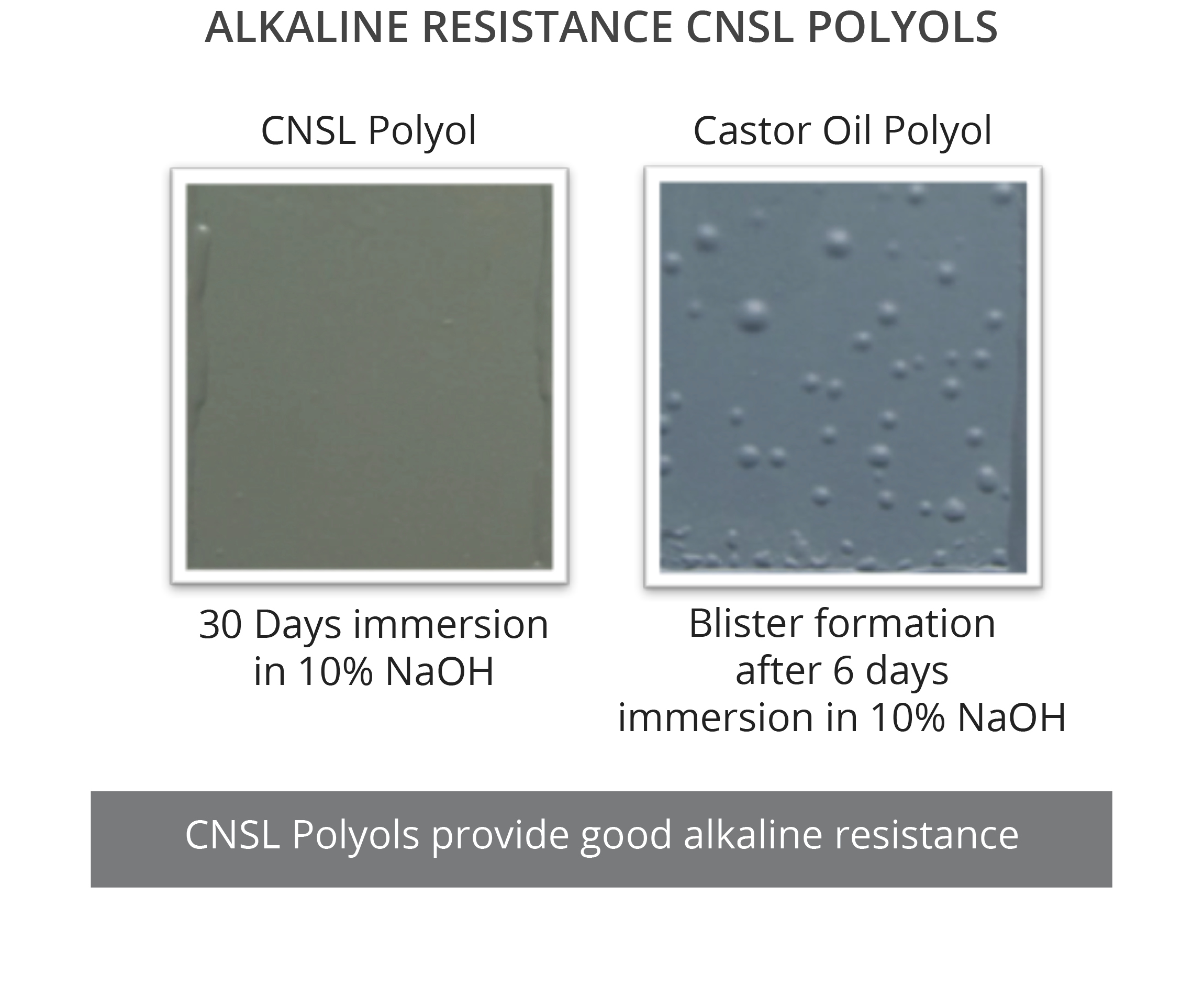 CNSL Polyols provide excellent protection against chemicals, specially alkaline solutions
