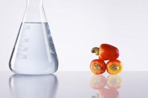 Renewable, CNSL type, high biocontent diluents for polyurethanes